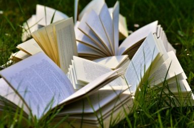 book-pages-books-close-up-415078